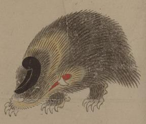 ヤマアラシの画像 p1_5